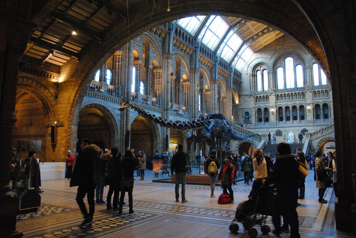 natuur historisch museum londen