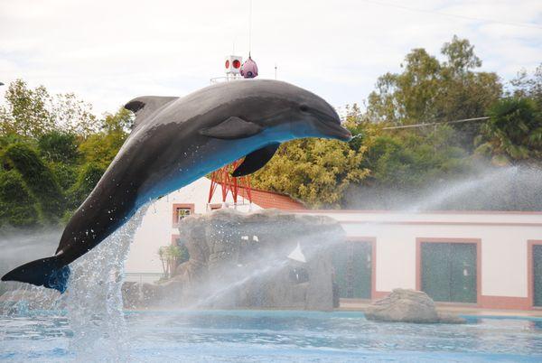 tn_Lissabon Zoo (4)