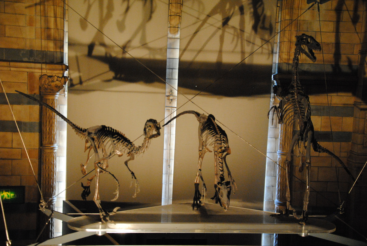 museums londenDSC_0284