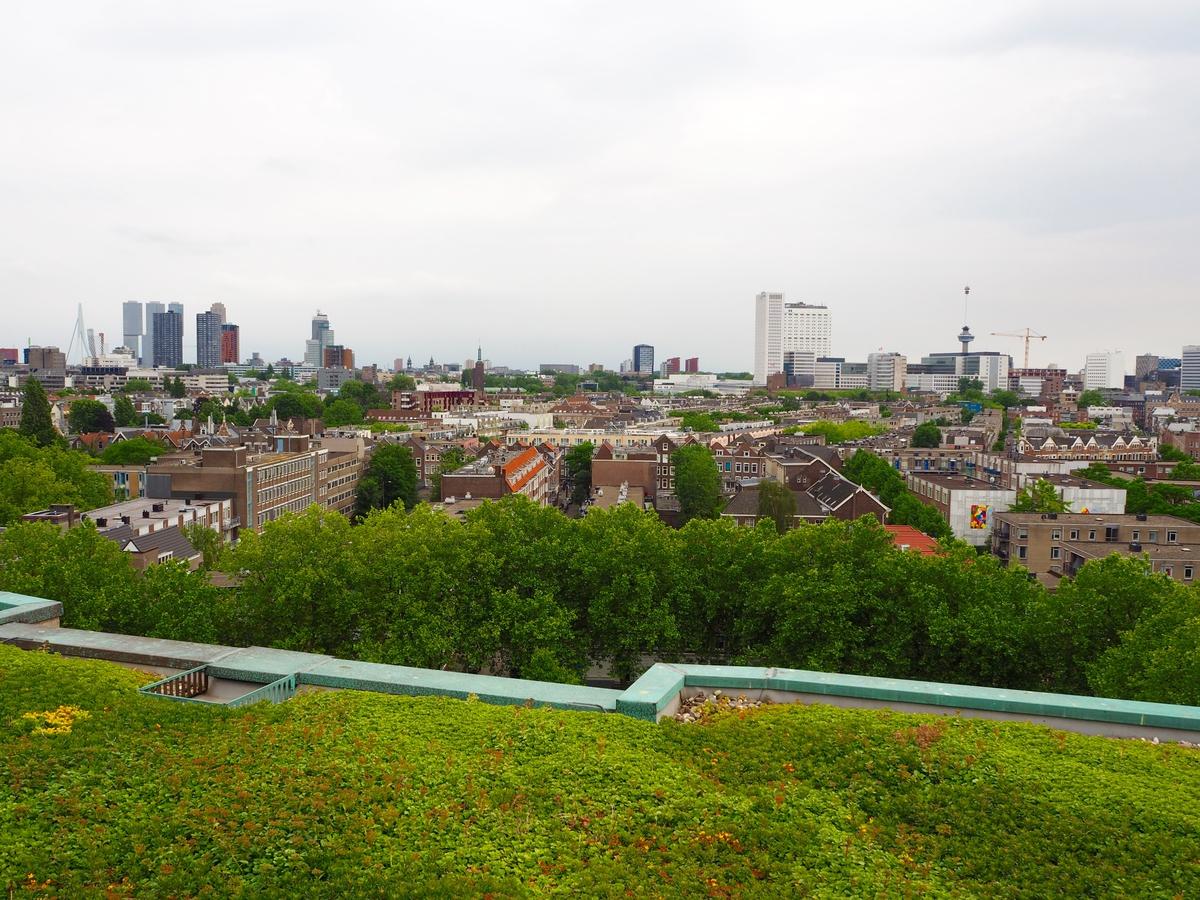 Dakendagen RotterdamP6120144