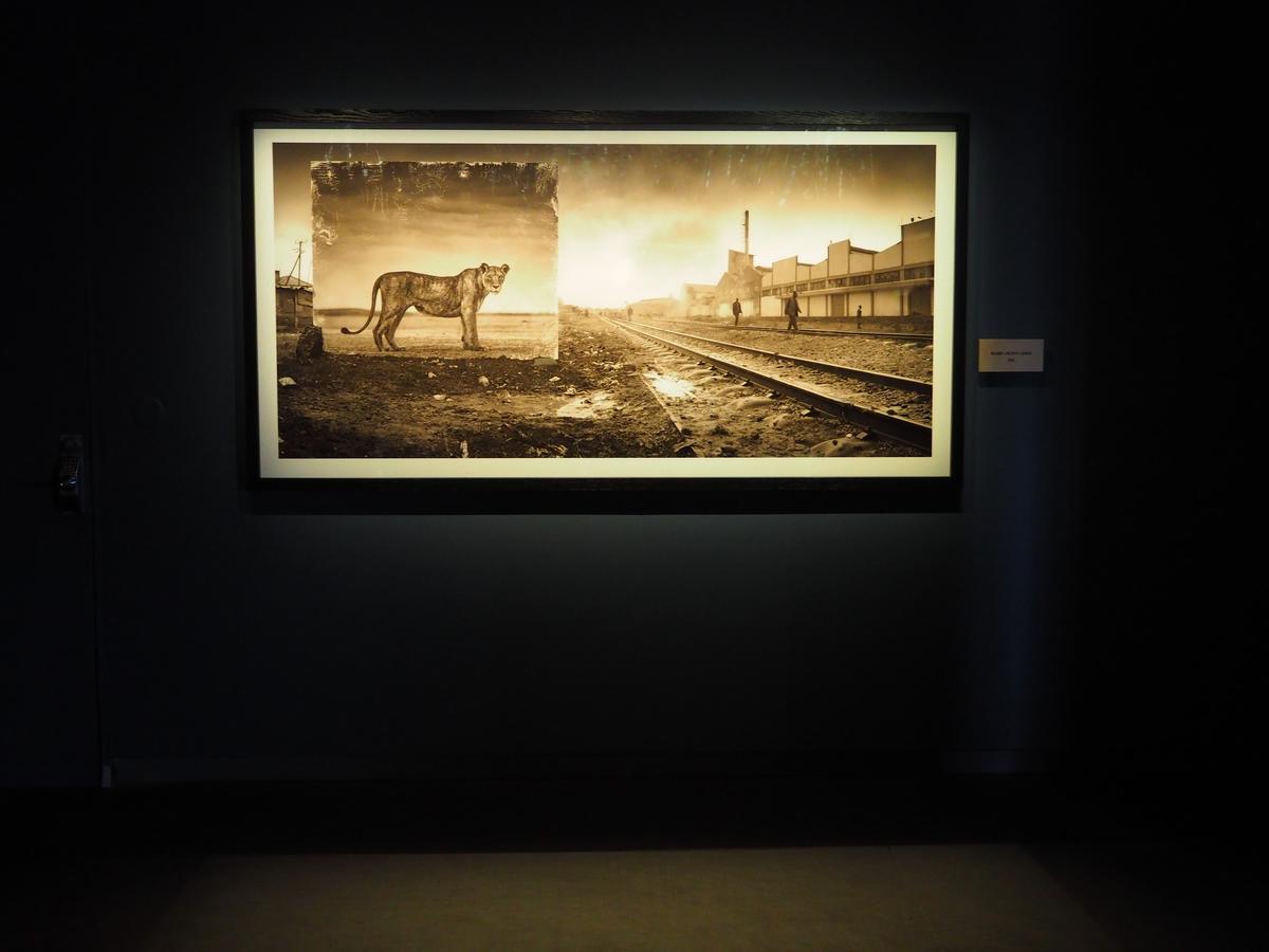 Fotografiemuseum StockholmP7150513