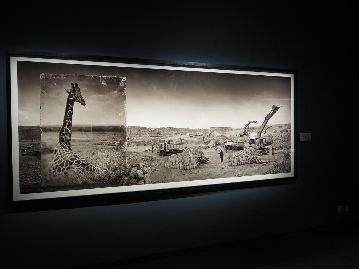 Fotografiemuseum StockholmP7150519