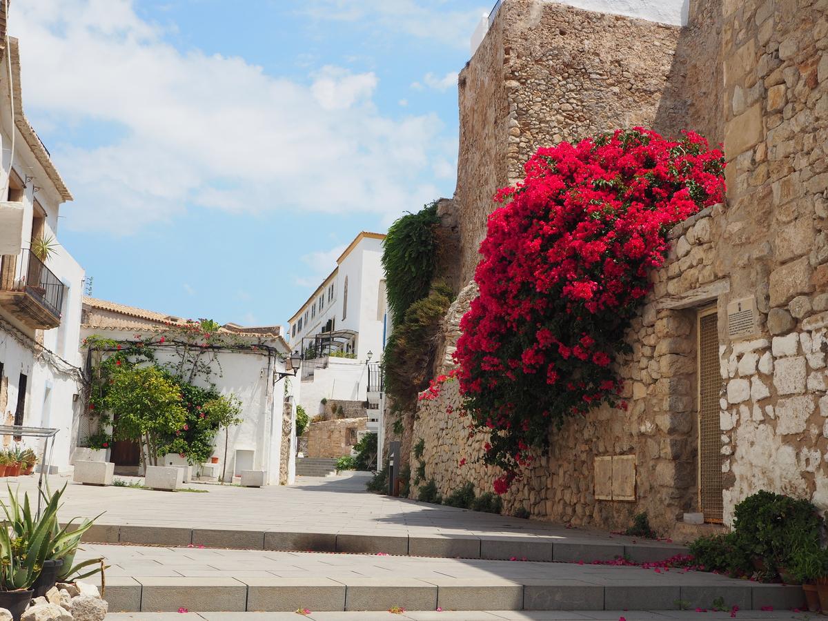 Ibiza Stad Eivissa P7231092