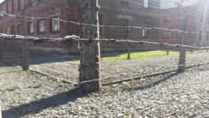 Auschwitz kamp !