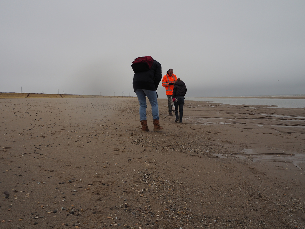 Fossielenexpeditie Maasvlakte Rotterdam P1155824
