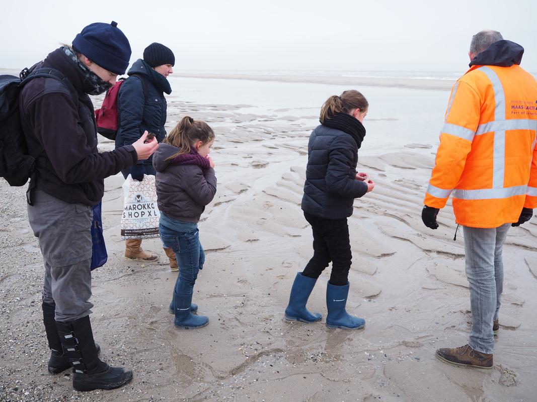 Fossielenexpeditie Maasvlakte Rotterdam P1155833